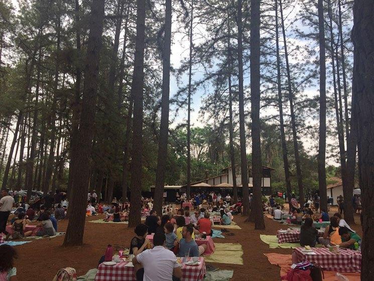 Foto: cantinhodena.com.br