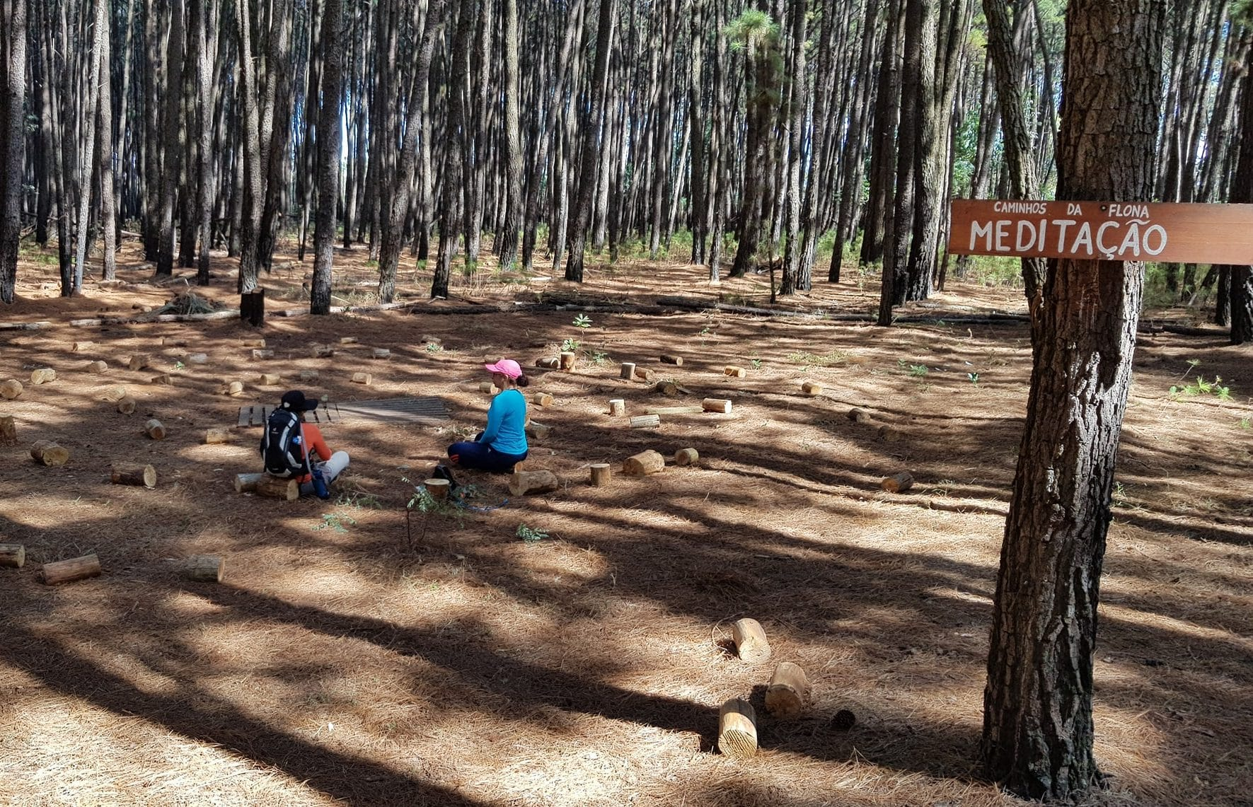 Foto: descobertasbarbaras.com.br