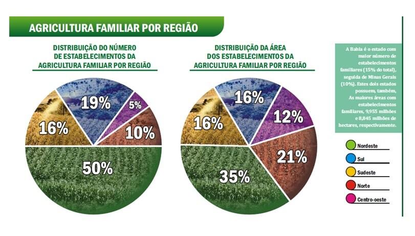 Imagem: sebraemercados.com.br
