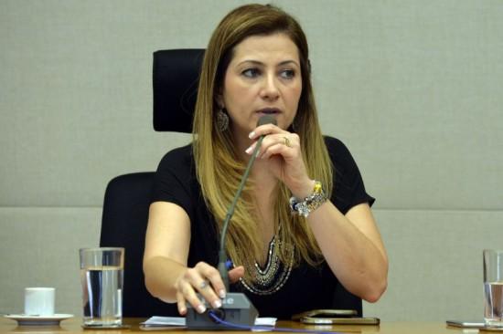 Sandra Faraj - Netpub