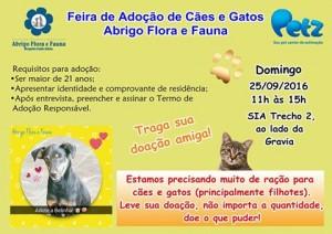 imagem de cartaz de feira de adoção de pets