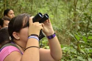 Bichos.foto de uma pessoa observando pássaros