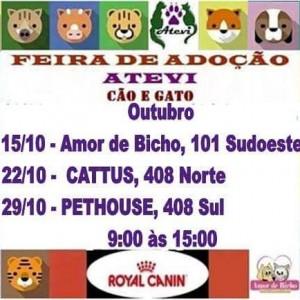 cartaz de feira de adoção de bichos Atevi