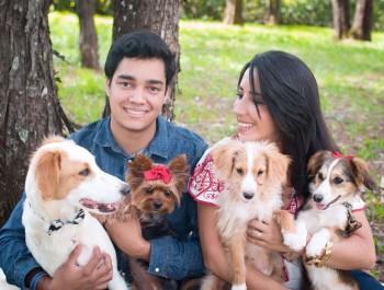 Agenda pet – Especial adoção