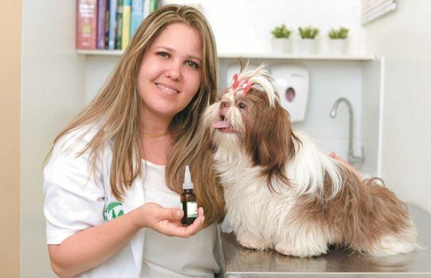 Ana Catarina Valle: homeopatia ajuda animais desenganados pela medicina tradicional Crédito: Raimundo Sampaio