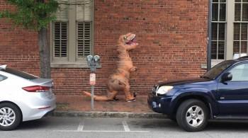 Jovem é indiciada por assustar cavalos fantasiada de Tiranossauro Rex