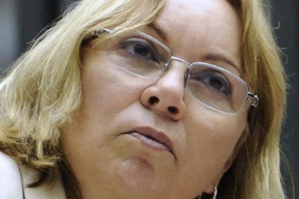Diogenis Santos/Agência Câmara
