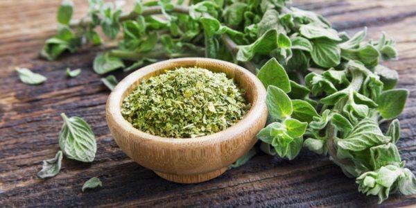 cura-pelo-oregano-entenda-as-propriedades-nutricionais-desse-alimento