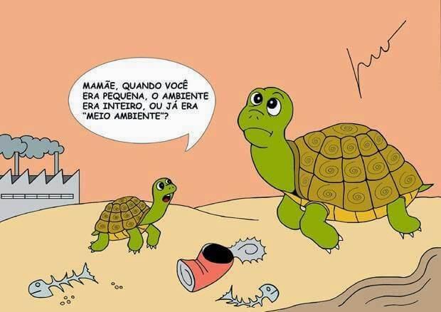 Charge: professorridaltovaz.blogspot.com