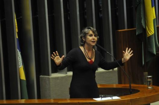 Érika Kokay - executiva do PT