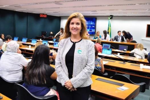 Daniela Teixeira, vice-presidente da OAB/DF