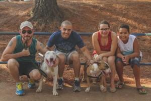 foto: Rosemberg Arruda /Divulgaçao.  Encontro de raças.Último encontro de bull terrier no parque da cidade.