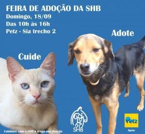 cartaz da feira de adoção pet da SHB