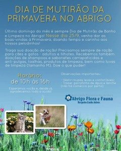 cartaz do mutirão de limpeza do Abrigo Flora e Fauna Pets