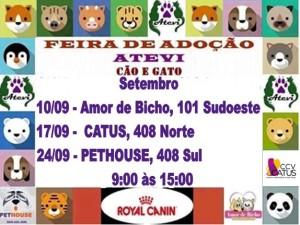 cartaz da feira de animais para adoção da Atevi-bicho