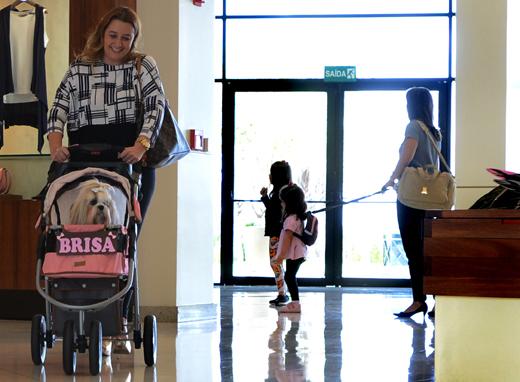 Pet friendly,foto mostra dona de uma cachorrinha passeando com ela em um shopping