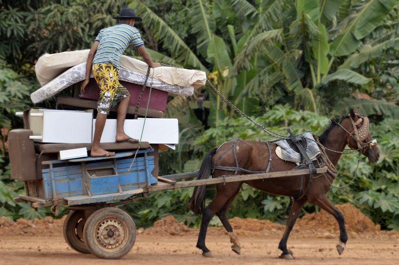 imagem mostra cavalo puxando uma carroça super carregada, para ilustrar matéria que anuncia a criação de um serviço Disque-denúncia no DF